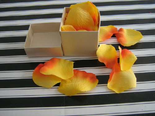  Boxed confetti Apricot